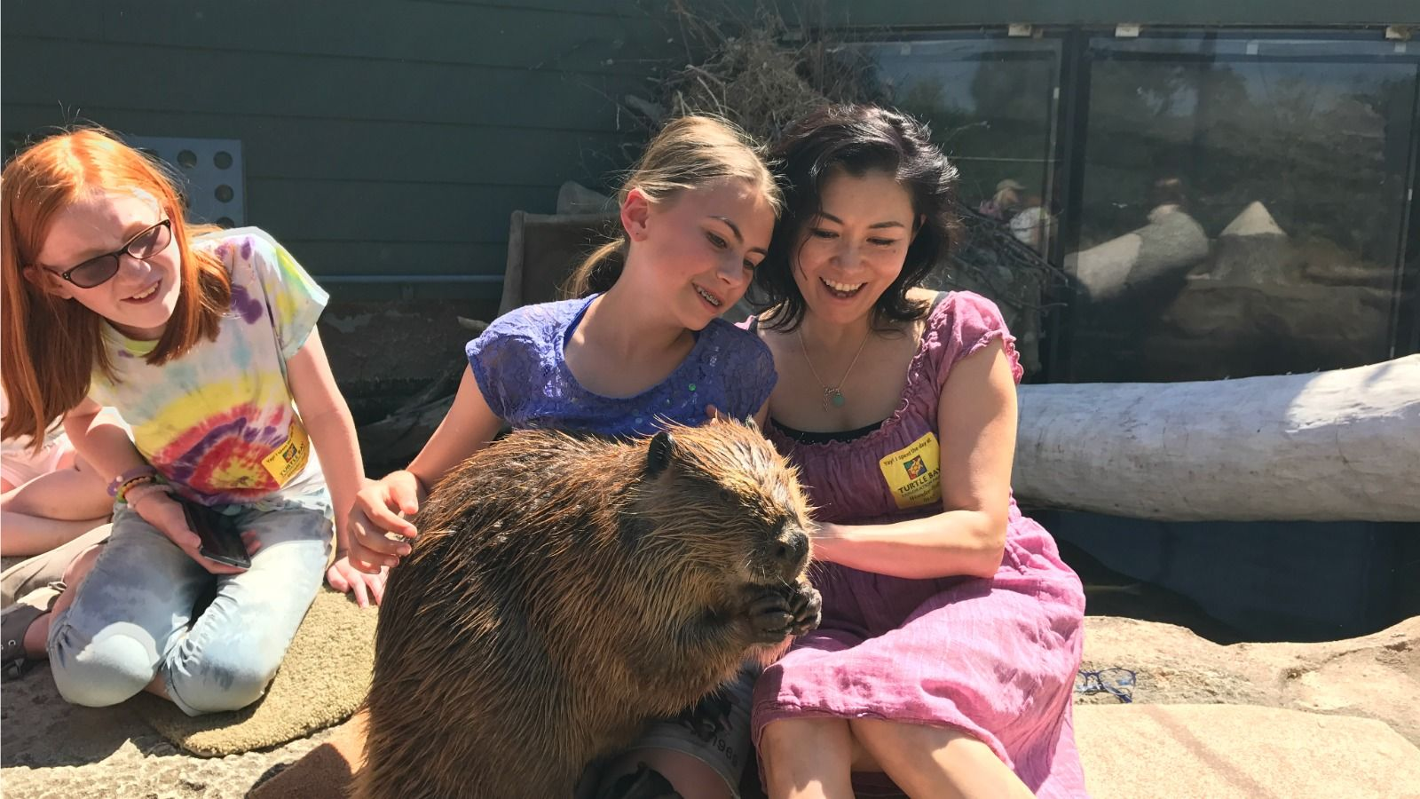 Experience Wildlife - Timber the Beaver with his Guests