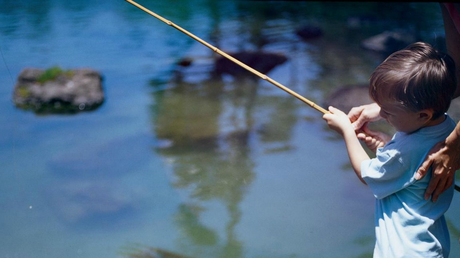 Experience Wildlife - Children's Fishing